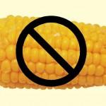 Corn Free Dog Food