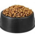 Make Your Own Dog Food